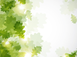 Bokeh Green Leaves