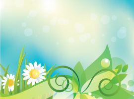 Daisy Vector Background
