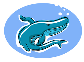 Free Whale Cartoon Vector