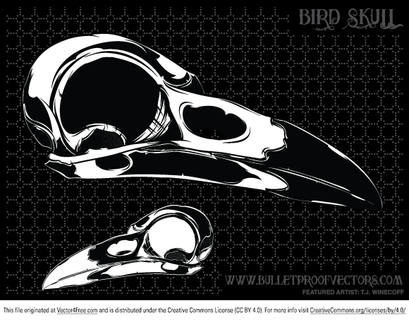 Free bird skull for you, enjoy and stop by our site for more freebies.