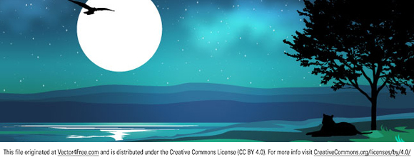Vector night wallpaper. Сool picture of the night scenery. Free for commercial used.  Link to the author.
