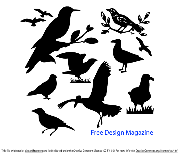 free vectors graphics - Vector Birds