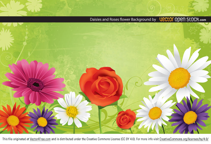 This great Daisies and Roses Flower Background vector brought you by Vector Open Stock is under Creative Common 3.0 Attribution License.