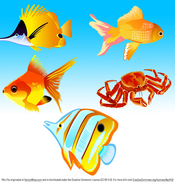5 Beautiful Free Vector Fish Icons in this set, Design by vector-finder.com,  Format:AI