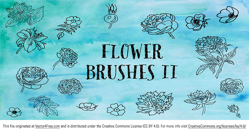 Here are some more awesome hand drawn floral vectors! Check out these new hand drawn flower vectors! A very useful set of hand-drawn flower brushes. Includes lilies, roses, dahlias and more.