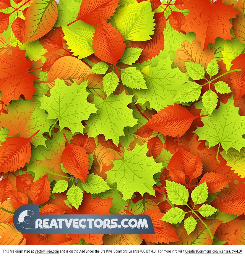 Summer is getting close to ending, so we are starting to think about fall leaves and cooler temps! Get ready for fall with this free autumn leaves vector background! This warm colorful autumn vector background is filled with tons of leaves.