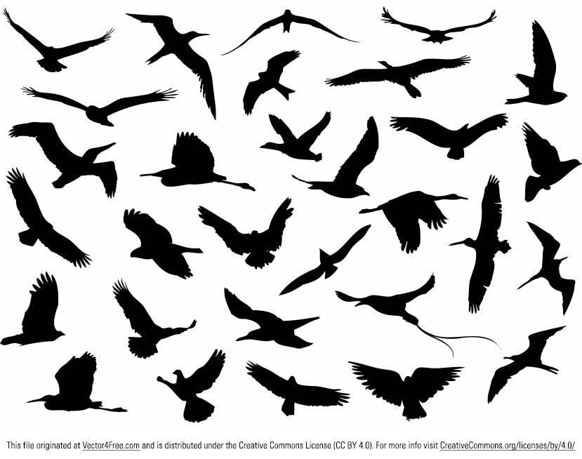 Download this site of 30 Free vector flying birds silhouettes. Free ...