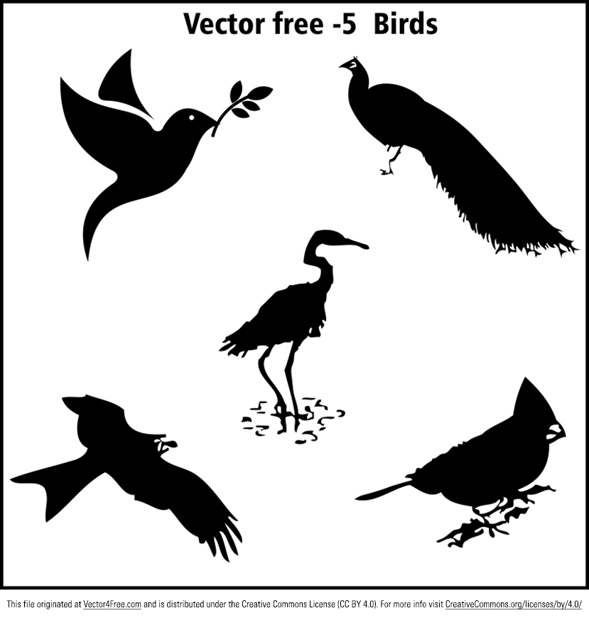 5 super awesome 100% free vector silhouette birds, pigeons. Hope you can use these bird silhouette vectors.