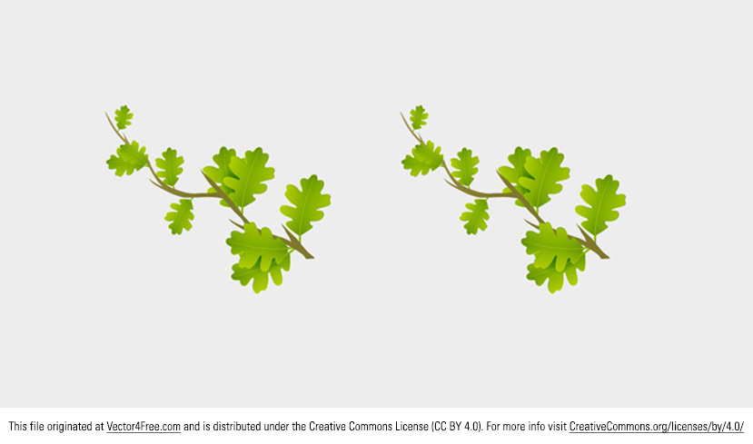 Even though fall is coming in the northern hemisphere, some parts of the world are still green and alive. Use this Small Branch Leaves Vector to celebrate life! This leaves vector would be perfect for any natural project.