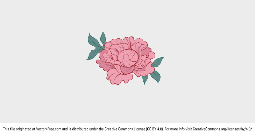 Today's freebie is a beautiful pink vector peony. Feel free to use this peony vector in your commercial and non-commercial projects, personal websites and printed work, as long as it's a part of a larger design. Perfect for summer and gardening projects!