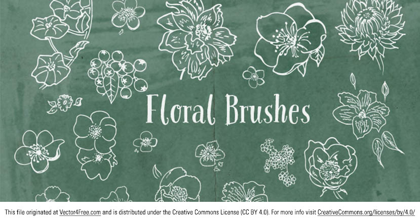Check out these new hand drawn flower vectors! A very useful set of hand-drawn flower brushes. Includes poppies, roses, dahlias and more. feel free to use in any of your projects :)