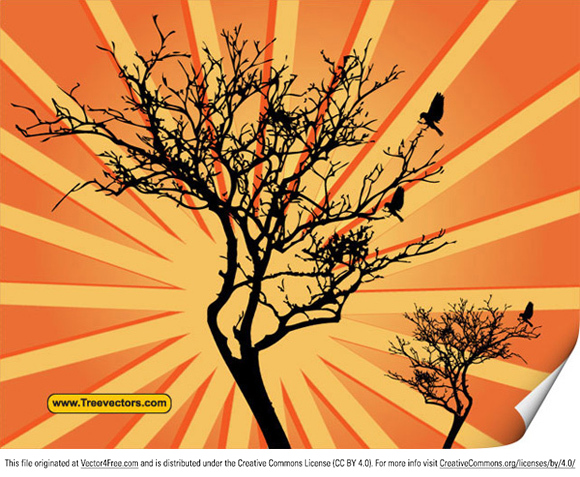 Sunburst background tree vector. Free for personal and commercial use.. Free tree vector image by www.TreeVectors.com.