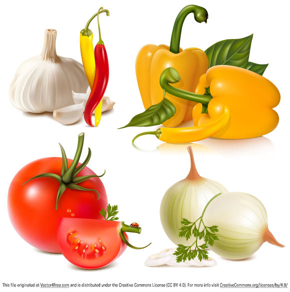 This Vegetables Free Vector Graphic you can download for free  in the EPS format and use it in your project. This Pack of realistic Vector Vegetables containssuch vector vegetables as: pepper, parsley leaves, garlic, chilli, onion, tomato.